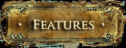 DFUW - Features